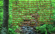 scenic-wallpapers-with-bible-verses-11