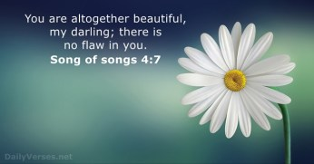 song-of-songs-4-7