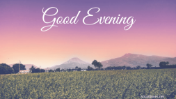 beautiful-sweet-good-evening-images