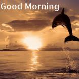 Good-Morning-20