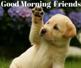 Good.Morning.Love-1