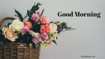 morning-images-with-flowers