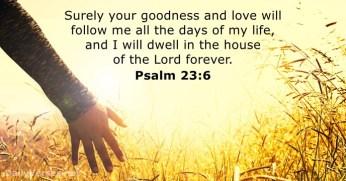 psalms-23-6-2