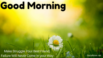 Quotes-About-Morning