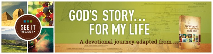 God's Story For My Life