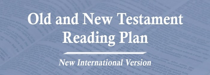 OLD NEW TESTAMENT READING PLAN