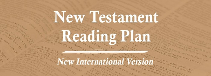 NEW TESTAMENT READUNG IN BROWN